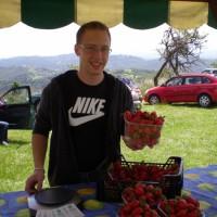 Domače sladke jagode na Jagodni nedelji 2014