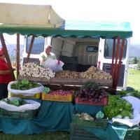 Na jagodnih nedeljah ste lahko kupili tudi svežo domačo zelenjavo